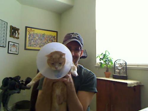 Cat_dish